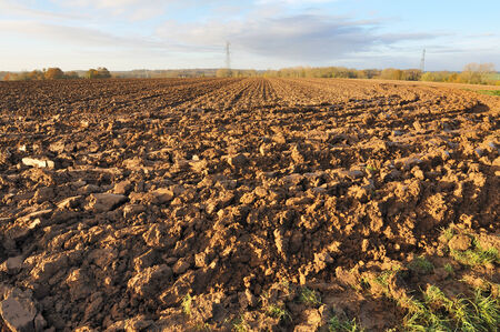 tillage: land of a freshly plowed by a sunny fall day field