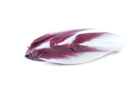 escarola: escarola rojo sobre fondo blanco