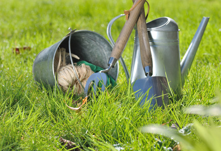 dibble: gardening tools and accessories on greenery grass