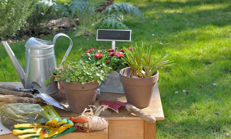 flower pots tools and garden accessories on a table stock photo 26972543 - Garden Accessories
