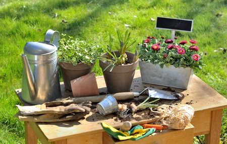 Flower Pots, Bulbs, Tools And Garden Accessories On A Table Photo