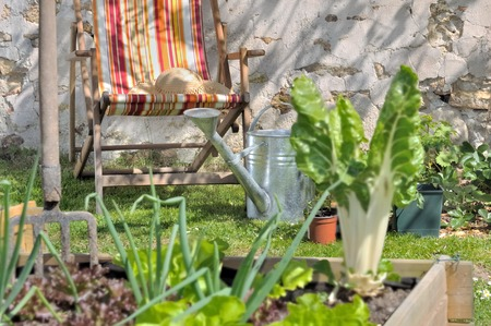 lettuce in a little vegetable square with a lounge chaire in background Standard-Bild