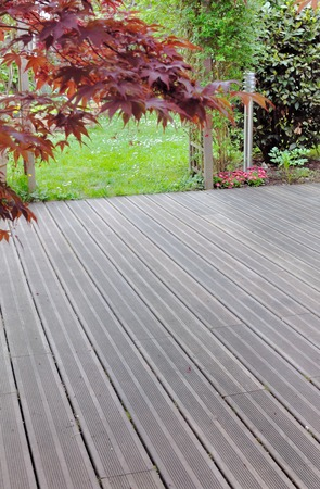 foliage of a Japanese maple above a wooden deck
