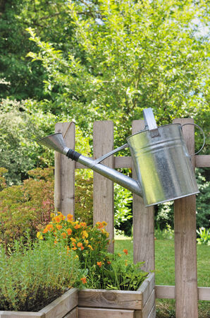 watering can hanging on a wooden fence in a garden  photo