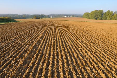 furrows: freshly plowed of land field forming furrows Stock Photo
