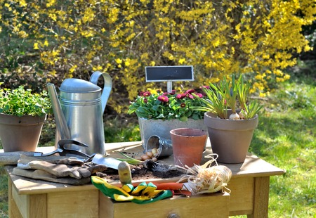 Gardening Accessories On A Table In Front Of Flowering Shrub Photo