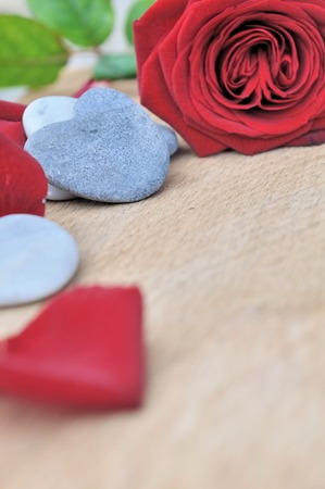 red pebble: heart shaped pebble and red roses with petals on wooden background
