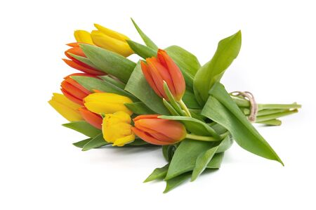 tulips isolated on white background: pretty bouquet of yellow and orange tulips isolated on white background