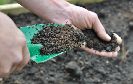 loam: hand man holding a gardening tool full with compost for garden Stock Photo
