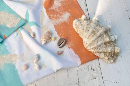 planck: giant clam and other seashells on a beach towel on white plank