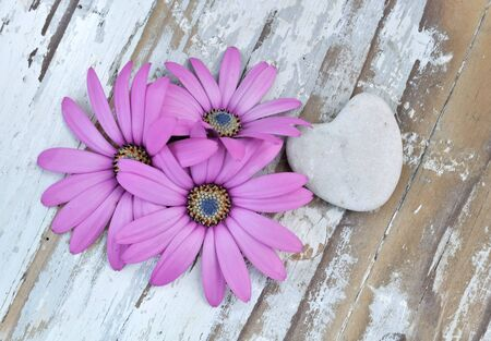 corolla: corolla of flowers on old wood with stone heart Stock Photo