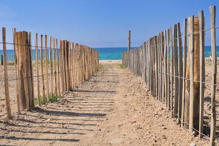 bordered: path in the sand leading to the sea bordered by wooden fence