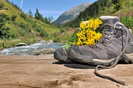 hiking shoes: hiking shoes with flowers on bridge crossing a mountain river