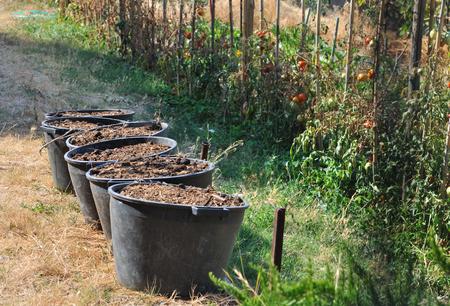 animal origin: buckets of animal origin  fertilizer in garden