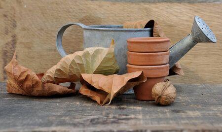 dode bladeren: kleine gieter met dode bladeren en potten op een houten plank Stockfoto