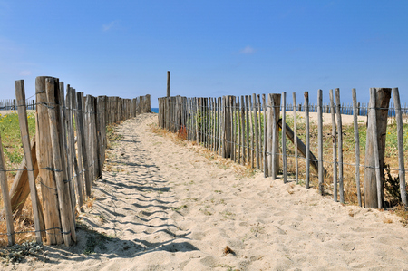 bordered: path in the sand bordered by a wooden fence