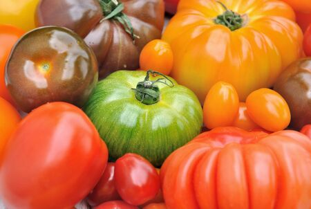 varieties: different varieties of colorful  tomatoes Stock Photo