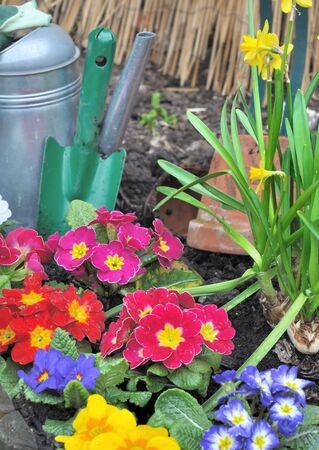 Spring flower bed with gardening accessories
