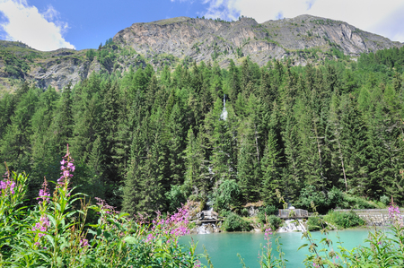 forested: water reservoir at the foot of forested mountains