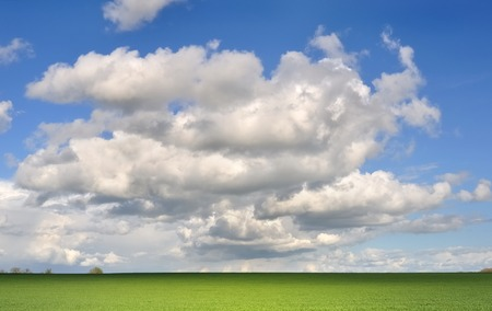 french countryside: green field under cloudy sky in french countryside