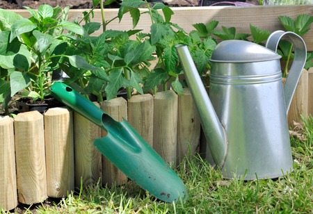 dibble: shovel and watering can against a wooden edge of a garden