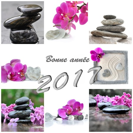 Greeting card for new year 2017 in french with flowers and pebbles
