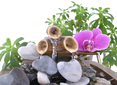 orchid on a small fountain and heart-shaped pebble on white background