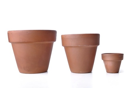 little and bid  terra cotta pots isolated on white background 写真素材