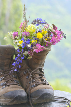 bouquet of pretty and colorful flowers put on hiking boots