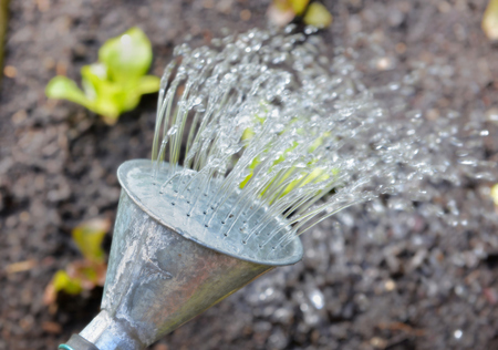 close the water from a  can watering a garden