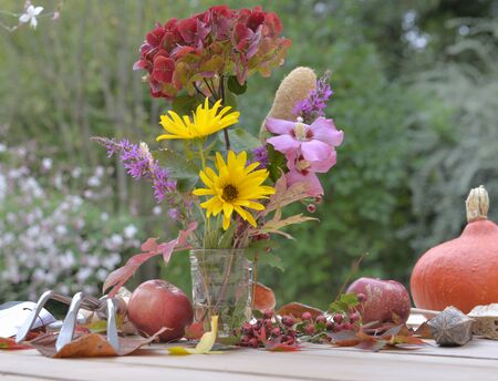 pretty bouquet of autumnal flowers coming from garden on a garden table with apples and pumpkin Foto de archivo