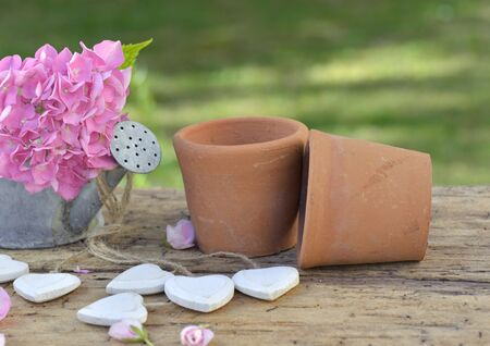pink flower o a littel watering can and terracotta flowerpots on a garden table with wooden white hearts