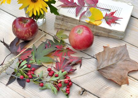 autumnal leaf, red apple and old book on a wooden table Фото со стока