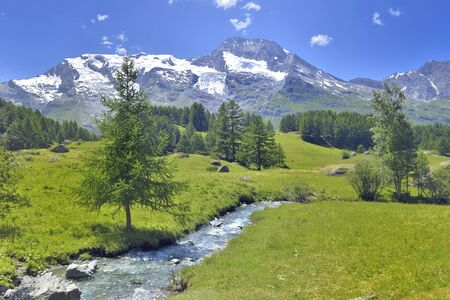 beautiful scenic ladscape in alpine mountain with glacier and greenery meadow with a little river