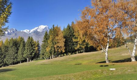 beautiful autumnal scenery in alpine mountain with white Mont-Blanc background  Фото со стока