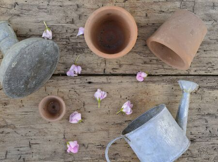 terra cotta pots and metal waterinc can on a board among petals of flowers