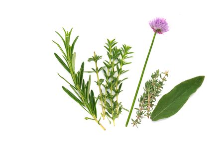 various fresh aromatic herbs with chive blooming on white background Reklamní fotografie