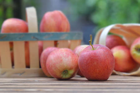 close on red apples in little basket on a wooden table in garden on green background