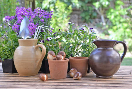 gardening tools in a water jug placed with others on a table with flowers and bulbs in a garden