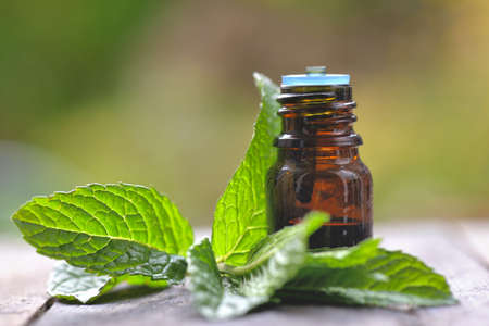 mint leaf with a bottle of aromatic oil on a wooden table