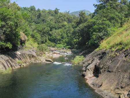A river flowing through the bio diverse rain forest of Silent valley in Kerala