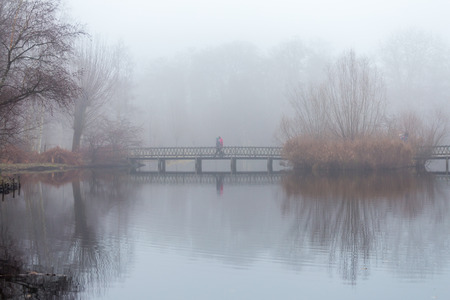 People take a stroll in the forest in misty foggy weather, walking on wooden footbridge over a pond. Reflections of reed, bush and trees on still water surface. Stock Photo