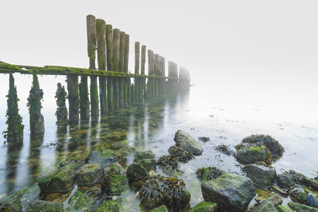 Old wooden groyne on a coastline with heavy dense fog with low visibility during a cold Winter morning. The horizon is not visible.