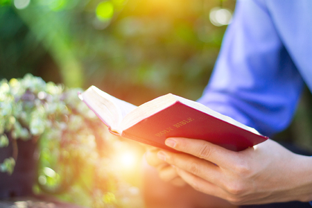 Close-up of womans hands while reading the Bible outside. Stock Photo