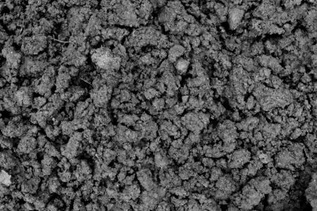 Black loose earth. Farmer plowed the field. Soil texture. Banco de Imagens