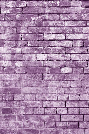 The background of the old violet brick wall for design interior and various scenes or as a background for video interviews.