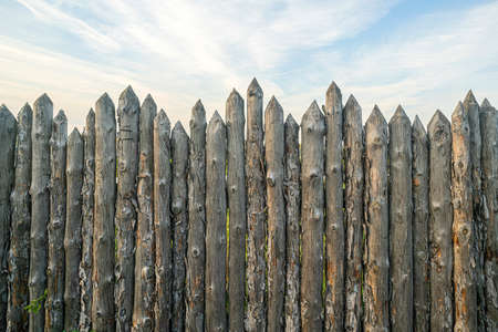 Wooden palisade made of logs. Log wooden fence. Sharp stakes in the ground.