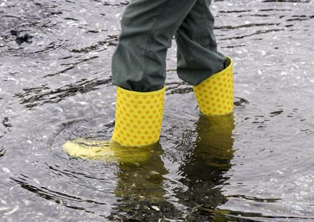 wade: Wade in yellow wellies.