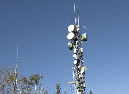 analogous: Antenna