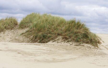misconception: Sandy desert.